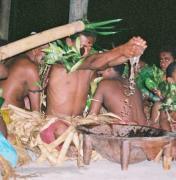Kava Ceremony, Phytotherapy