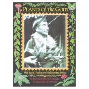 plants, gods, hallucinogens, atropine, henbane