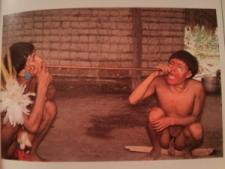 indigenous, sacred, tradition, snuff, hallucination, dmt