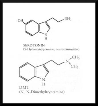 serotonin, DMT, chemical composition