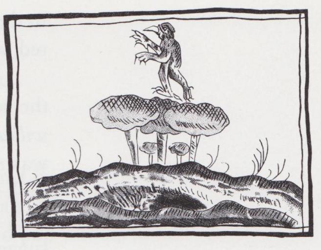 Aztec Fungi and Demon