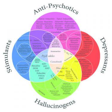 Psychoactive Drugs Venn Diagram.jpg