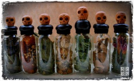 aconite, amanita muscaria, belladonna, black henbane, datura, mandrake, foxglove
