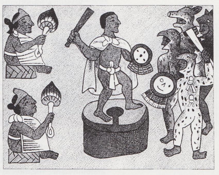 Aztec Mushroom Ceremony Herb Museum